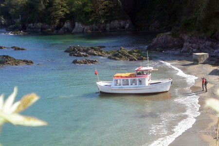 WESTON MAID - Cawsand Ferry, Plymouth - Photo: © Ben Squire 2010 - www.simplonpc.co.uk