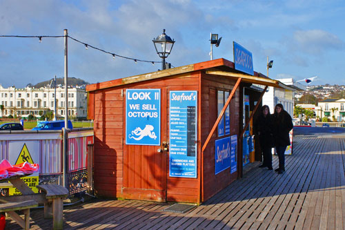 Paignton Pier - Photo: �Ian Boyle 28th February 2015