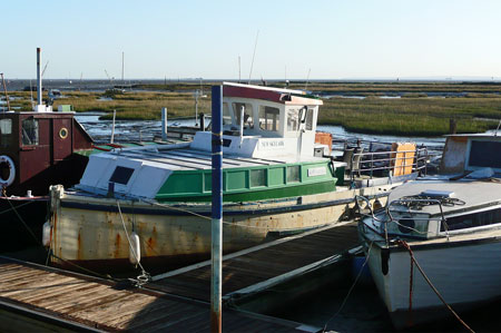 New Skylark at Leigh-on-Sea - Photo: � Ian Boyle, 10th December 2009